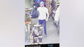 Sheriff searching for Bartow County Dollar General shoplifting suspect