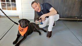A 'Mellow' way to help out animals in need
