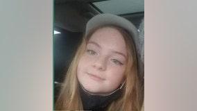 Carroll County teen last seen getting into minivan, officials say