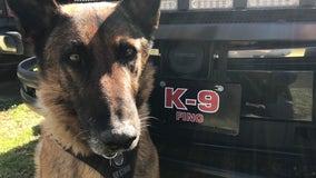 Douglasville K9 officer retiring after successful crime-fighting career