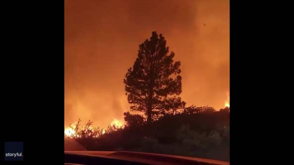 Fire tornado rages through Plumas National Forest in California