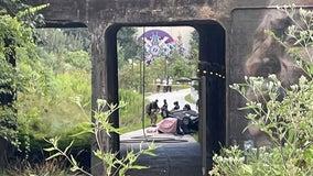 Driver dead after vehicle overturns onto Atlanta BeltLine path