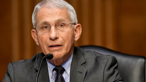 As delta variant surges, Fauci warns more 'pain and suffering' ahead