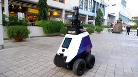 Singapore testing robots to patrol pedestrian areas for 'undesirable social behaviors'