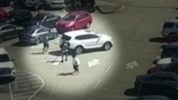 White Kia SUV linked to multiple armed robberies at Lenox Mall over weekend, police say