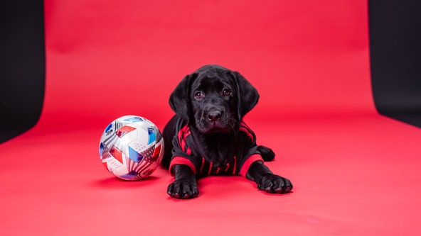 Atlanta United welcomes new service dog to team