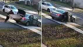 Prince George's County package thief struggles to steal TV