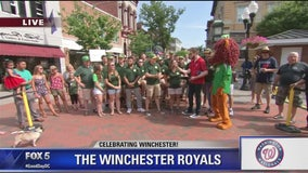 Winchester | Zip Trip: Washington Nationals Hometown Team