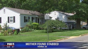 Police: Vienna man fatally stabbed ex-wife, shot self