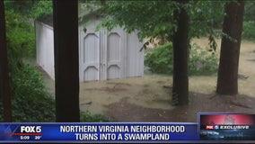 Northern Virginia neighborhood turns into swampland