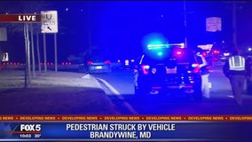 Police investigating after pedestrian struck in Prince George's County