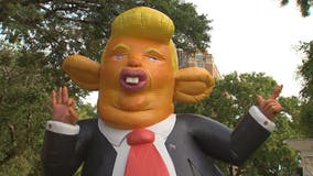 Inflatable Trump rat goes up in Washington DC