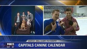 Caps' Nic Dowd talks about 2019 Capitals Canine Calendar