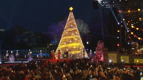 President Trump, first lady light National Christmas Tree