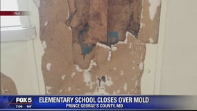 Prince George's County elementary school closes after mold found