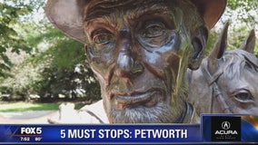 FOX 5 Zip Trip to Petworth! 5 Must Stops!