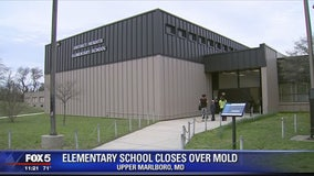 Prince George's County elementary school to be closed for renovations after mold found