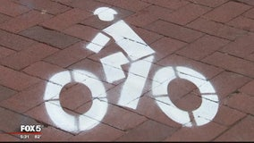 Annapolis business owners unhappy with new temporary bike lanes on Main Street
