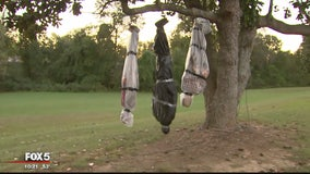 Does it go too far? Maryland family's Halloween display raises eyebrows