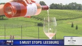 Leesburg ZIp Trip: 5 Must Stops