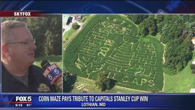 Maryland farm is ALL CAPS with their corn maz