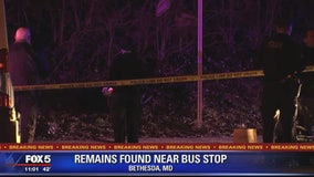 Human remains found on side of Bethesda road