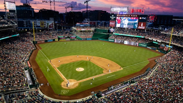 Lawyer asks judge to postpone court case so he can watch Nationals with his son