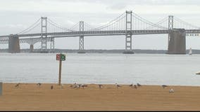 MDTA releases plans to reduce traffic at Bay Bridge
