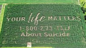 'Your life matters': Farm's corn maze raises awareness for suicide prevention