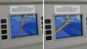 Snake inside pump surprises customer getting gas