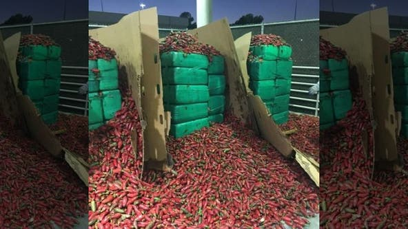 CBP officers seize $2.3 million worth of marijuana found inside shipment of jalapeño peppers