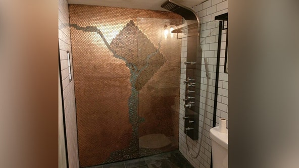 Couple fashions DC shower map from thousands of pennies