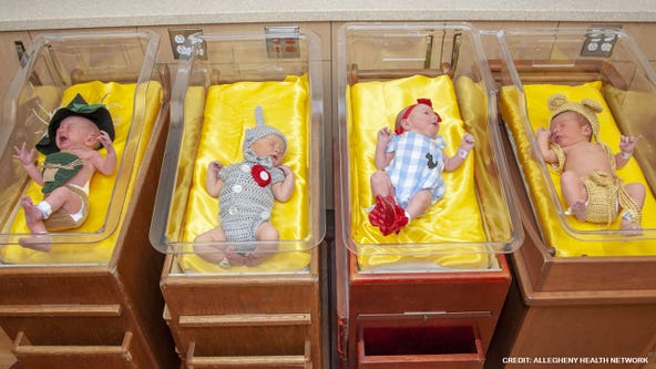Hospital dresses newborns in adorable 'Wizard of Oz' outfits in honor of film's 80-year anniversary