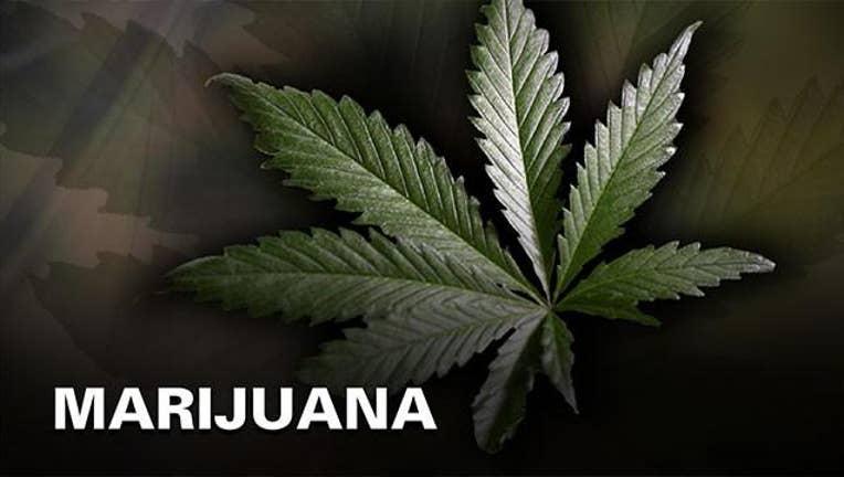 KSAZ-marijuana-generic.jpeg.jpg