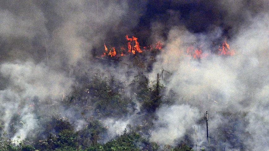 Brazilian Pres Bolsonaro to send army to contain Amazon fires