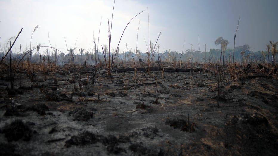 Amazon-fire-aftermath-GETTY.jpg