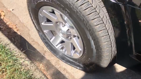 Man arrested after dozens of car tires slashed in Alexandria, police say