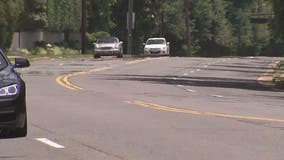 Alexandria City Council to consider options for Seminary Road project