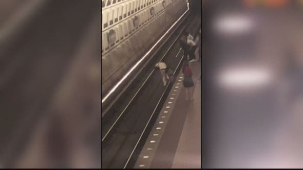 Video: Man pushed onto Metro tracks in violent attack