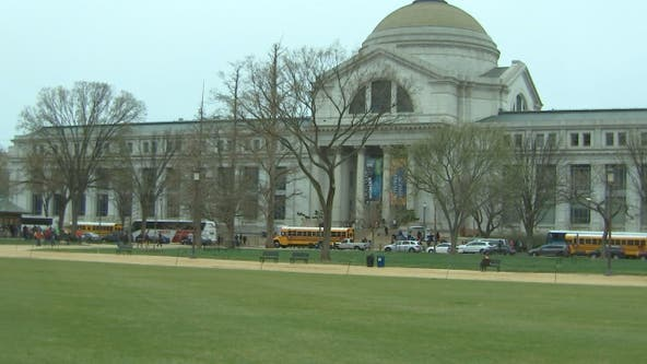 Smithsonian invites people to celebrate Museum Day with free tickets