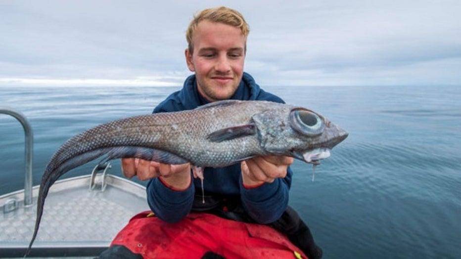 ratfish-caught-2_1568574272798_7658807_ver1.0_640_360.jpg