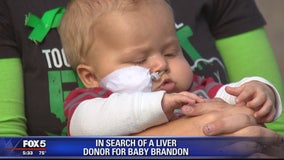 In search of a liver for baby Brandon