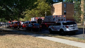 DC housing authority employee shot to death while on lunch break, police say