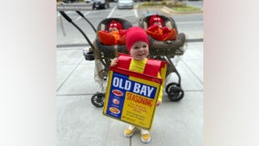 Old Bay and twin crustaceans win Halloween with cute costumes