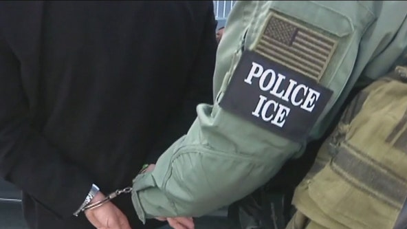 ICE planning immigration enforcement operations in sanctuary cities