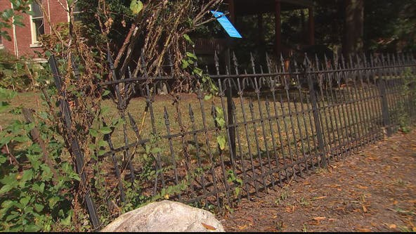 City of Alexandria claims sovereign immunity in dispute over damaged fence
