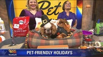 Tips on how you can keep your home pet-friendly for the holidays