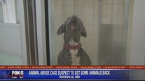 Accused animal abuser to get some pets back