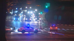 4 in custody after Prince George's County carjacking ends in DC crash, police say