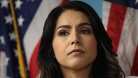 Gabbard disputes Bannon's claim she interviewed for Trump admin role, takes shots at Clinton